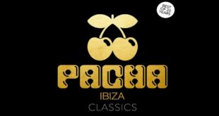 Pacha Best of 20 Years